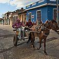 Horsecart #3