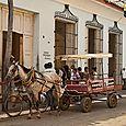 Horsecart #4