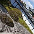 Surreal garden, Tofoku-ji