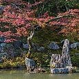 Rocks in pond,Tenryu-ji