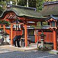 Fushimi worshipers