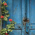 Flowers and door