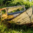 Rotting boat Port Medway