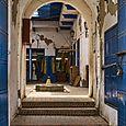 Feline entryway