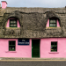 Pink thatch