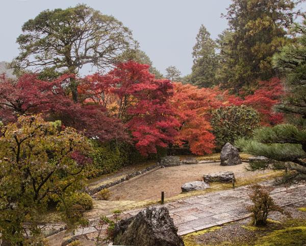 Garden at Saiho-ji
