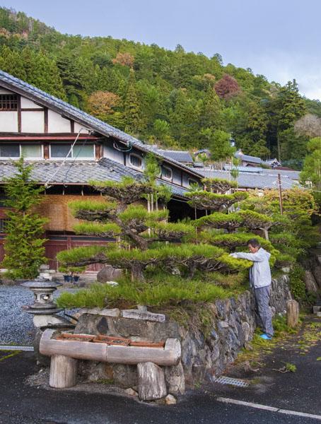 Gardener in Shizuhara