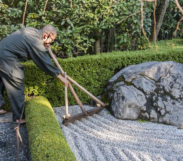 Raking the garden, Taizo-in