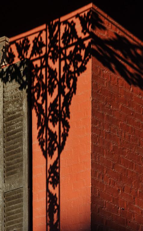 Bourbon Street Shadow