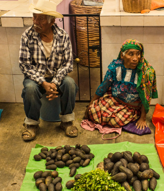 Selling avocados
