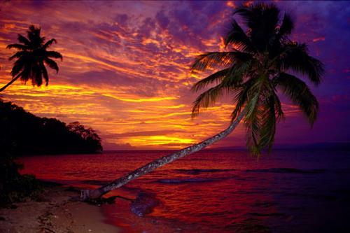 تعرف على جزر فيجي fiji7main.jpg