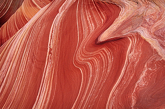 Detail of the Wave